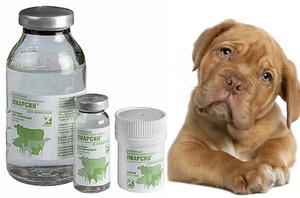 лиарсин для собак инструкция уколы