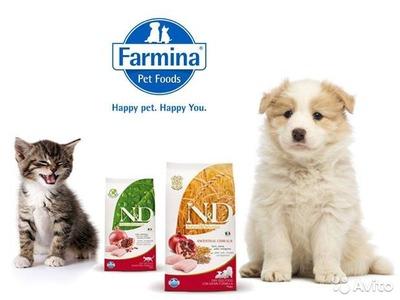 Сухой корм для собак фармина
