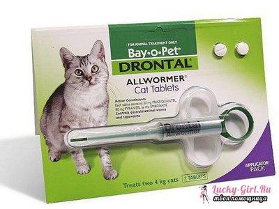 Слабительное для кошки препараты и средства