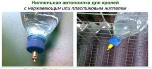 Удобные поилки для кроликов - фото