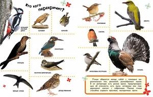 список птиц россии